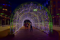 Sentosa (chooyutshing) Tags: decorations singapore archway sentosa fairylights attractions lightedup christmas2015festival