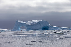 """A Surreal """"Seascape (jpmckenna - Tenquille Lake Up Next) Tags: snow ice antarctica iceberg petermannisland zodiaccruising"""