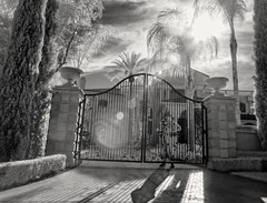 dystopian future history: the clown security debacle (** RCB **) Tags: clowns clown evil gate home security schocktober dystopian creepy polkadot flair palmtrees mansion villa hacienda backlight infrared landscape
