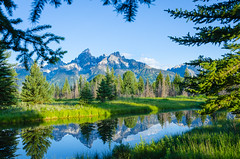 Through the Trees (Russ Elmy Photography) Tags: grandtetons grand tetons throughthetrees mountains nikon reflection landscape landscapephotography