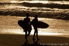 quikpro16-32 (arjen nouta) Tags: quikpro roxypro sunset hossegor vieuxboucau france beach playa lastlight surf