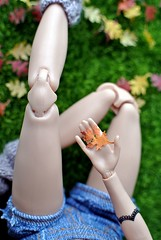 autumn morning in park (svetlana.titova) Tags: dollminiature diorama onesixth onesixthscale grass autumn leaves doll dollclothes dollshoes dollaccessories mattel madetomovebarbie barbiemadetomove barbie barbiestyle barbiefashionistas barbieoutfit