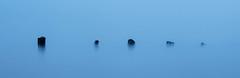 Beneath (cottagearts123) Tags: snettisham blue posts norfolk sea