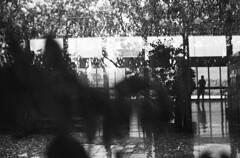 (bettsdg) Tags: bw blackwhite film analogue olympusom10 kodaktmax 400iso 50mm monochrome urban station reflections pomiglianodarco campania italy visions 35mm