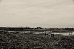 Ruhe und Entspannung (rofrhu) Tags: schwarz weis sw bw bank robert hummer roberthummer d7000 nikon gras weite landschaft ruhe entspannung