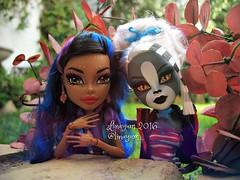(Linayum) Tags: robecca robeccasteam meowlody mh monsterhigh monster mattel doll dolls mueca muecas toys juguetes linayum