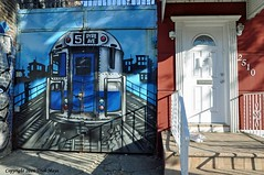 Neighbors (Trish Mayo) Tags: door bronx graffiti mural streetart 5train tuffcity wallart