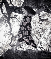 Fearless Heroine (JDS Fine Art & Fashion Photography) Tags: trees monochrome blackwhite heroine epic cinematic dramatic wind bravery fearless strength youngwoman