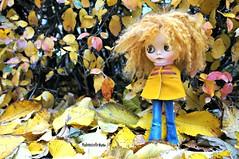 Falling in love with fall (mademoiselleblythe) Tags: blythe custom zaloa mformonkey stellinna squeakymonkey stockholm fall october