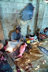 Fish Market (indomitablemachine) Tags: hadiboh fish fishermen market socotra yemen hadhramautgovernorate ye