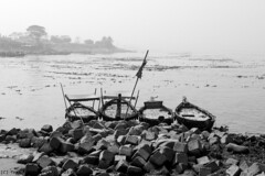 Waiting (Topu Saha) Tags: people boat waiting river padma meghna chandpur bangladesh