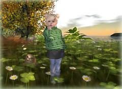 Aleas autumn stroll (Alea Lamont) Tags: ndmd cutie toddler cuties mesh body child skin tiny girl skins children tots kindergarten seal fall autumn norwegan sweater angle boots leggins tights baby girls