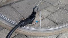 i hate this! (twinni) Tags: mw1504 19112016 beachcruiser ventil einspeichung ventilloch pumpe luftdruck iko