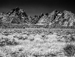 up in the mountains (richard binhammer) Tags: grandtetons mountains bwir meadow mountainviews landscape blackandwhite infrared