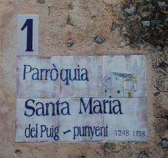 "Galilea (06) Starter <a style=""margin-left:10px; font-size:0.8em;"" href=""http://www.flickr.com/photos/122939928@N08/31083536100/"" target=""_blank"">@flickr</a>"