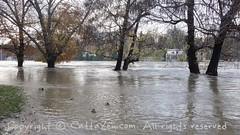 Torino (35) (cattazen.com) Tags: alluvione torino po esondazione parcodelvalentino murazzi pienadelpo cittditorino turin piemonte