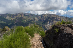 Atop the Mountains (Aymeric Gouin) Tags: madeira madre portugal europe montagne mountain paysage paisaje landscape landschaft nature hike randonne outdoor travel voyage olympus omd em10 aymgo aymericgouin levada path chemin