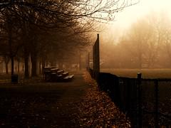 jour de brouillard - 3 (photosgabrielle) Tags: photosgabrielle fog montral ville city urban brouillard