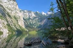 Knigssee - Obersee (Kurt Haberl) Tags: summer lake mountains alps nature bavaria see berchtesgaden outdoor sommer oberbayern berge upper land alpen bergsee protection naturschutzgebiet obersee knigssee schnau berchtesgadener