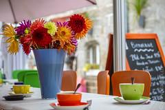 Holiday colours (Dschoeb) Tags: flower colour coffee café canon couleurs 7d pontaven bistrot 2470mm
