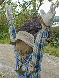Norland Scarecrow Festival: Songs: I Shot the Sheriff