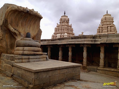 12 feet high monolithic nagalinga at Lepakshi (Trayaan) Tags: india monument temple temples historical historicaltemple monolith hindutemple rocksculpture andhrapradesh lepakshi incredibleindia templesofindia historicallysignificant stonetemples indianhistoricalarchitecture