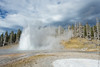 Grand Geyser.jpg (JuSlaughter) Tags: park autumn trees usa cloud mist mountains tree fall water america forest volcano us grant wildlife united rocky grand basin steam upper national caldera yellowstone states geyser erupt geothermal eruption ulysses 1872 subalpine supervolcano