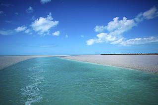 Bahamas Bonefishing - Andros Island 48