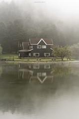 Always foggy, always beautiful... (oskaybatur) Tags: morning autumn reflection nature misty turkey landscape october pentax trkiye foggy hazy bolu glck turkei 2015 ekim sonbahar justpentax pentaxart pentaxkr smcpentaxda50mmf18 oskaybatur