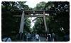 Torii (Toudai) Tags: leica f45 fujifilm m5 15mm meijijingu superwideheliar