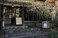 Japanese sweets restaurant (kasa51) Tags: door autumn tree window leaves sign japan typography restaurant kamakura steps sweets maccha anmitsu kuzukiri shiruko