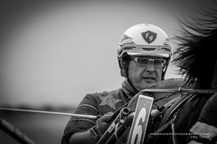 A day at the races. (Digidiverdave) Tags: portrait horses people spain equestrian menorca baleares horserace trotting davidhenshaw henshawphotographycom