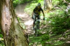 Mountain bike No.26 (kutruvis nick) Tags: trees mountain leaves bicycle sport forest greek person woods nikon track action mountainbike hellas downhill greece treetrunk biker nik athlete evia no26 steni dirfi d5100 kutruvis