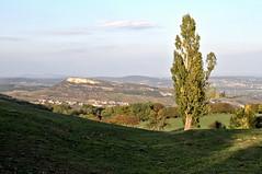 Roche jumelle (Chemose) Tags: autumn france tree automne landscape burgundy paysage bourgogne arbre hdr roche vergisson grangedubois bourgognedusud grandsitedesolutrépouillyvergisson southburgundy