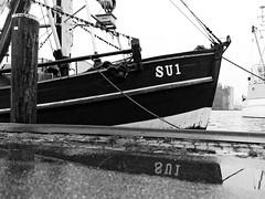 Festgemacht (malp007) Tags: fischkutter kutter boot boat fisher harbor hafen husum nordsee blackwhite reflection spiegelung outdoor stadt allfreepictures bestof2016