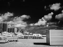 Beach Day (M.ALKHAMIS) Tags: street leica 35mm alkhamis malkhamis mtype240