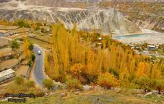 Autumn Road (Shehzaad Maroof Khan) Tags: road trees pakistan mountains nature river countryside nikon december valley karakoram hunza karimabad ontheroad gilgitbaltistan
