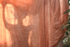 cortina ros (Efe Godoy) Tags: sol cortina rosa tarde varal lenol