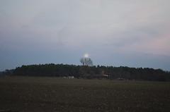 Moon Raising