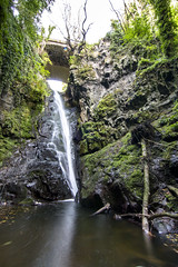 A Scottish Paradise (Chris B70D) Tags: scotland exploring nature landscape landmarks sunday weekend world st cyrus den finella waterfall tall amazing height hidden treasure secret place pool rock vines green trees utopia mirage paradise water arch tunnel