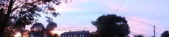 DSC04690 (sarahebourne) Tags: sunset telephonewires panorama
