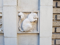 Squirrel Architecture (Exile on Ontario St) Tags: cureuil squirrel architecture montral vieuxmontral concrete brick difice building immeuble oldmontreal montreal decor