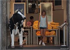 La Vaca que mira (Manuel Moraga) Tags: manuelmoraga lavacaquemira vaca emoticonos tienda madrid espaa
