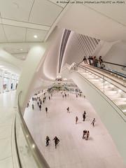 Calatrava Transportation Hub (DSC08769-Edit) (Michael.Lee.Pics.NYC) Tags: newyork wtc worldtradecenter calatrava transportationhub oculus mall escalator architecture fisheye fisheyehemi sony a7rm2 rokinon12mmf28