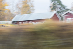 Riding through the countryside (Housemill) Tags: canoneos750d viewfromacar countryside sidewindow utsiktfrnbil lantlig sidoruta blurredmotion