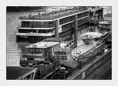 A quai (afantelin) Tags: noiretblanc pretobranco blackwhite paris seine iledefrance pniches boat bateau navigation