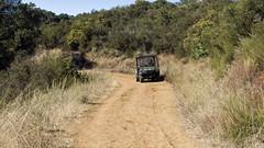The informer (LeftCoastKenny) Tags: ranchosanantonio trees brush grass trail road vehicle cart ranger