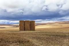 The Beauty of Farm Land (dshoning) Tags: farm country rural washington palouse clouds