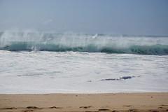 DSC05187 (neilreadhead) Tags: awt1 hawaii oahu waimeabay