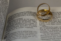 Biblia y Anillos (FabianJeria) Tags: anillos biblia rings love couple marriage marry matrimonio bible religion religio god dios biblias mateo jesus jehova